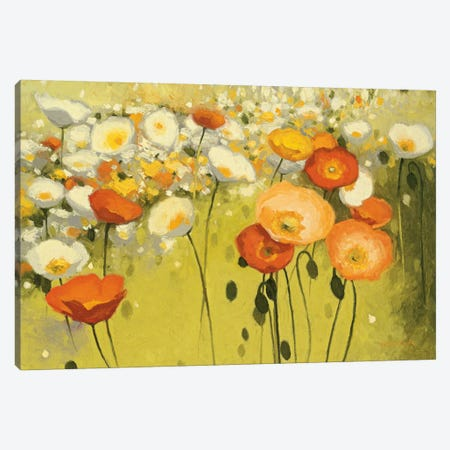 Spring Confetti Canvas Print #WAC1171} by Shirley Novak Canvas Print