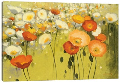 Spring Confetti Canvas Art Print