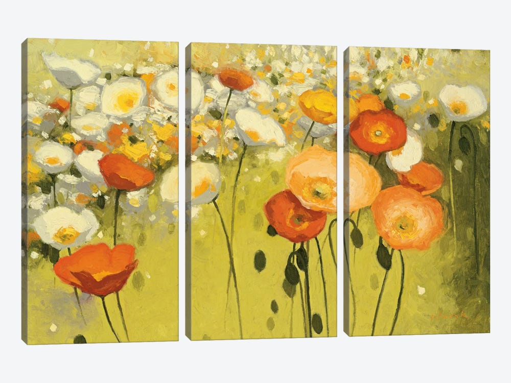 Spring Confetti by Shirley Novak 3-piece Canvas Print