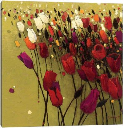 Tulip Drift Green  Canvas Print #WAC1175