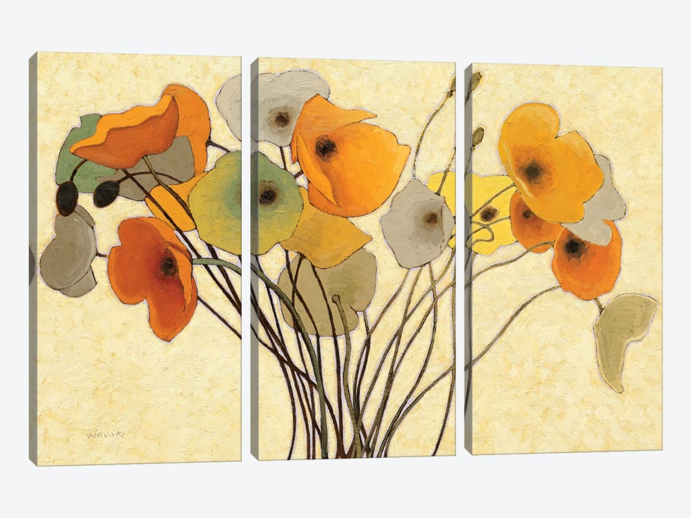 Pumpkin Poppies I by Shirley Novak 3-piece Canvas Art