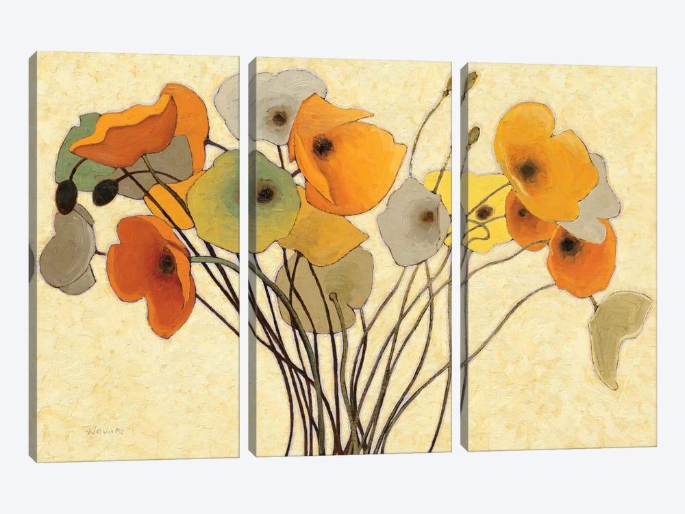 Pumpkin Poppies I by Shirley Novak 3-piece Canvas Art