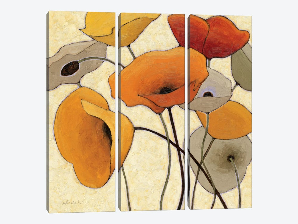 Pumpkin Poppies III by Shirley Novak 3-piece Canvas Artwork