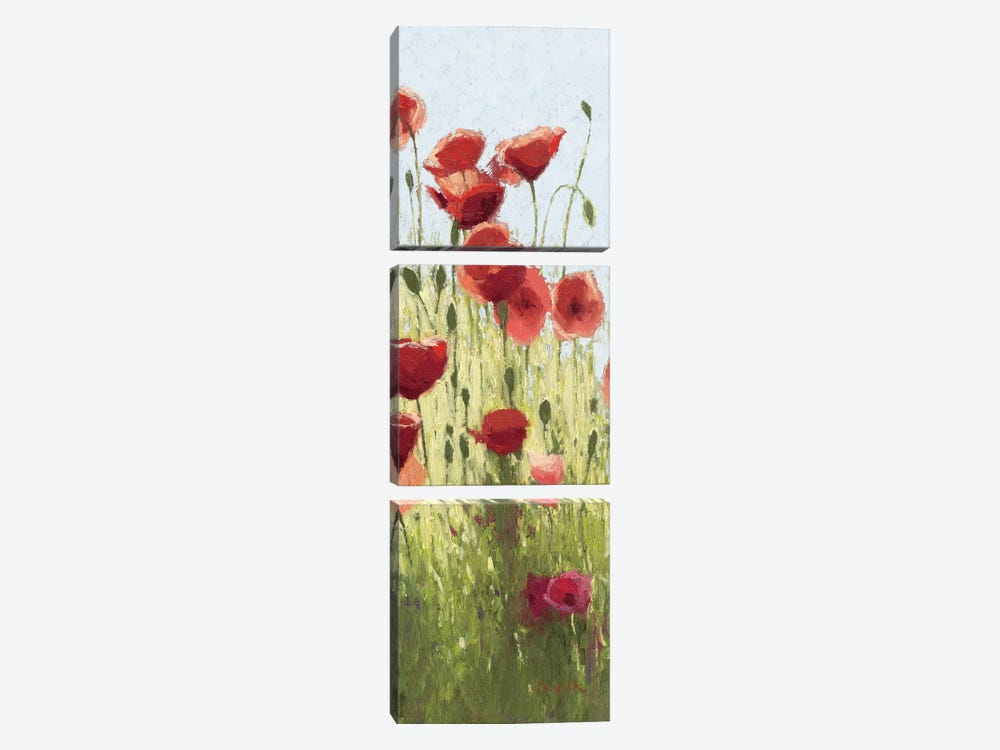 Mountain Poppies I by Shirley Novak 3-piece Art Print