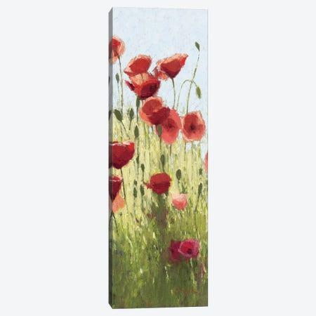 Mountain Poppies I Canvas Print #WAC1191} by Shirley Novak Canvas Art Print