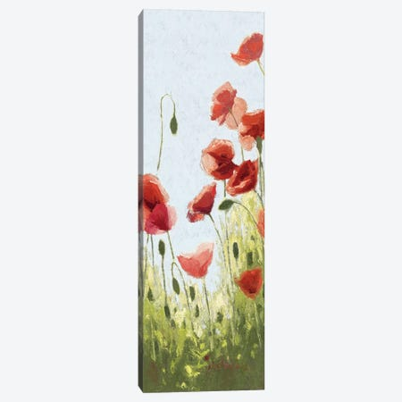 Mountain Poppies II Canvas Print #WAC1192} by Shirley Novak Canvas Art Print