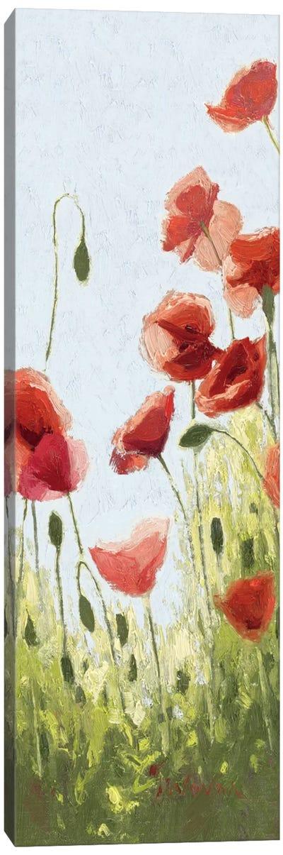 Mountain Poppies II Canvas Print #WAC1192