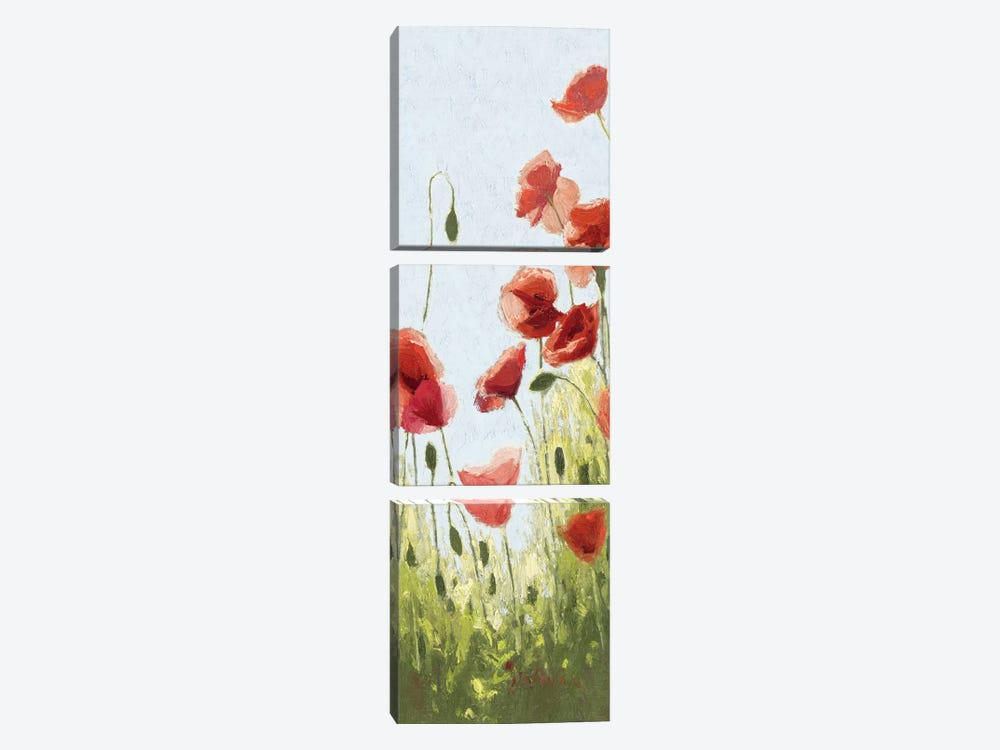 Mountain Poppies II by Shirley Novak 3-piece Canvas Wall Art