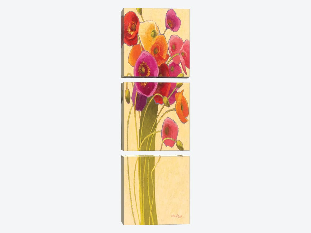 Amapola Barcelona II by Shirley Novak 3-piece Canvas Artwork
