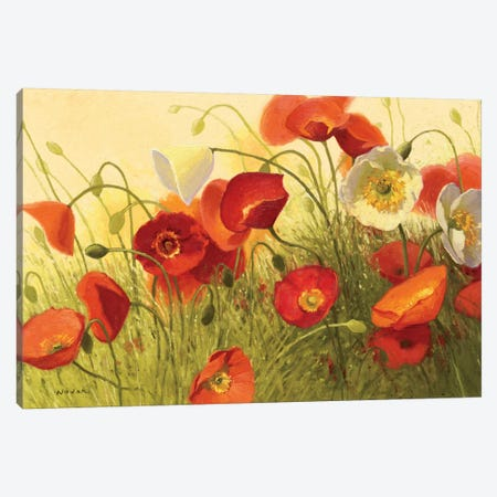Havin a Heat Wave Canvas Print #WAC1195} by Shirley Novak Canvas Art