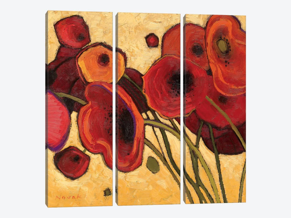 Poppies Wildly I  by Shirley Novak 3-piece Canvas Art