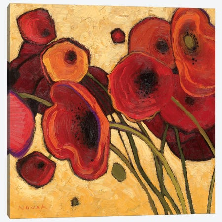 Poppies Wildly I  Canvas Print #WAC1196} by Shirley Novak Canvas Wall Art