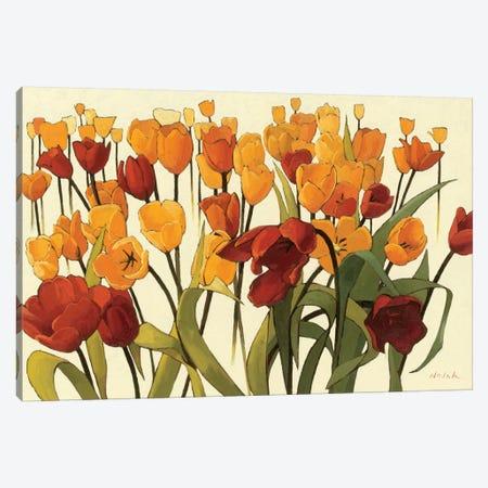 Tulipomania Canvas Print #WAC1199} by Shirley Novak Canvas Art Print