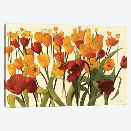 Tulipomania Canvas Print #WAC1199} by Shirley Novak Canvas Art Print
