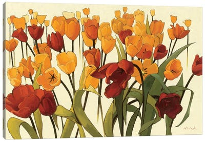 Tulipomania Canvas Art Print