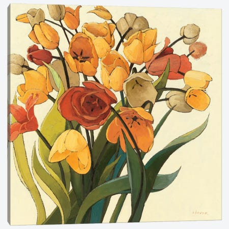 Comogli Colore Canvas Print #WAC1201} by Shirley Novak Canvas Art Print