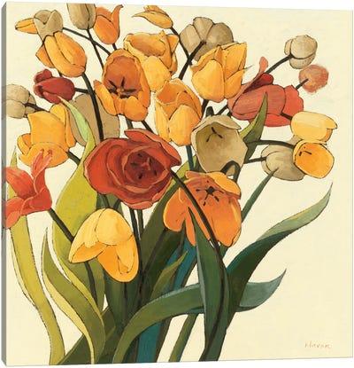 Comogli Colore Canvas Print #WAC1201