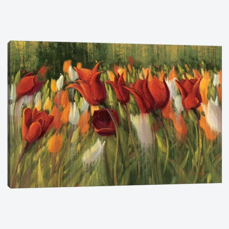 Tipsy Tulips Canvas Print #WAC1202} by Shirley Novak Canvas Print