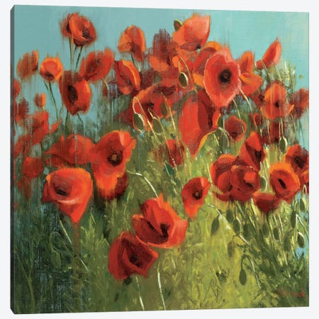 Sunshine and Raindrops Canvas Print #WAC1203} by Shirley Novak Canvas Print