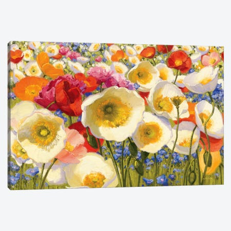Sunny Abundance Canvas Print #WAC1206} by Shirley Novak Canvas Wall Art