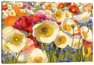 Sunny Abundance Canvas Art Print