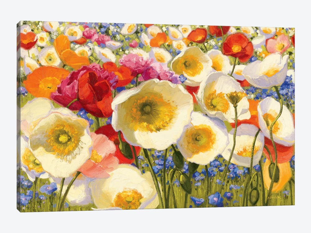 Sunny Abundance Canvas Print By Shirley Novak Icanvas