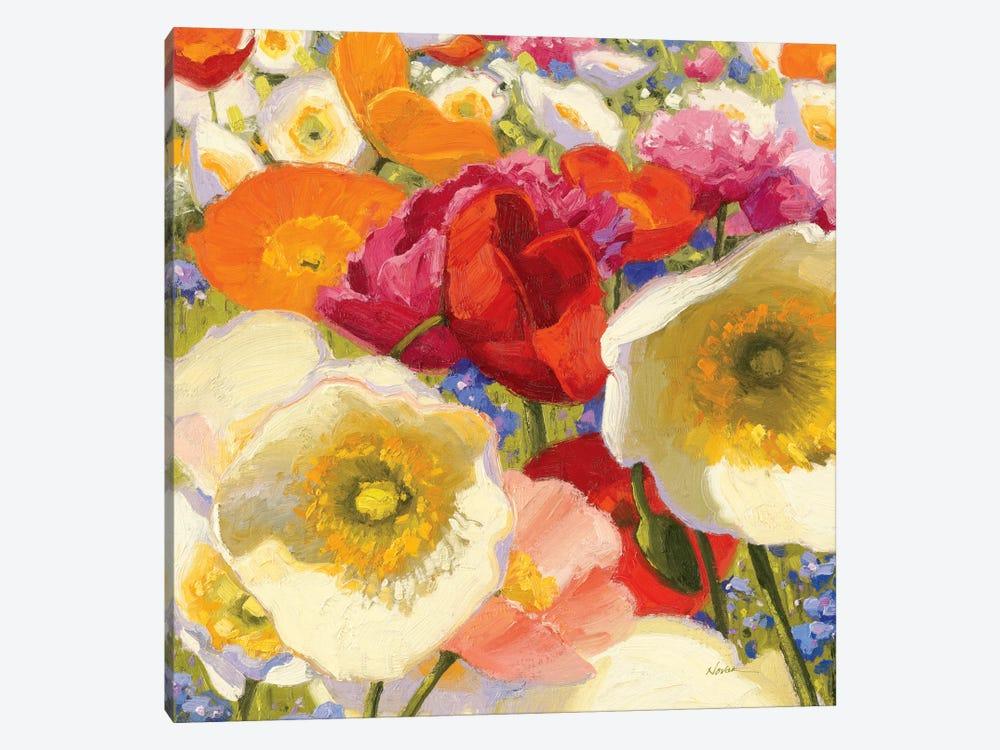 Sunny Abundance Ii Canvas Art Print By Shirley Novak Icanvas