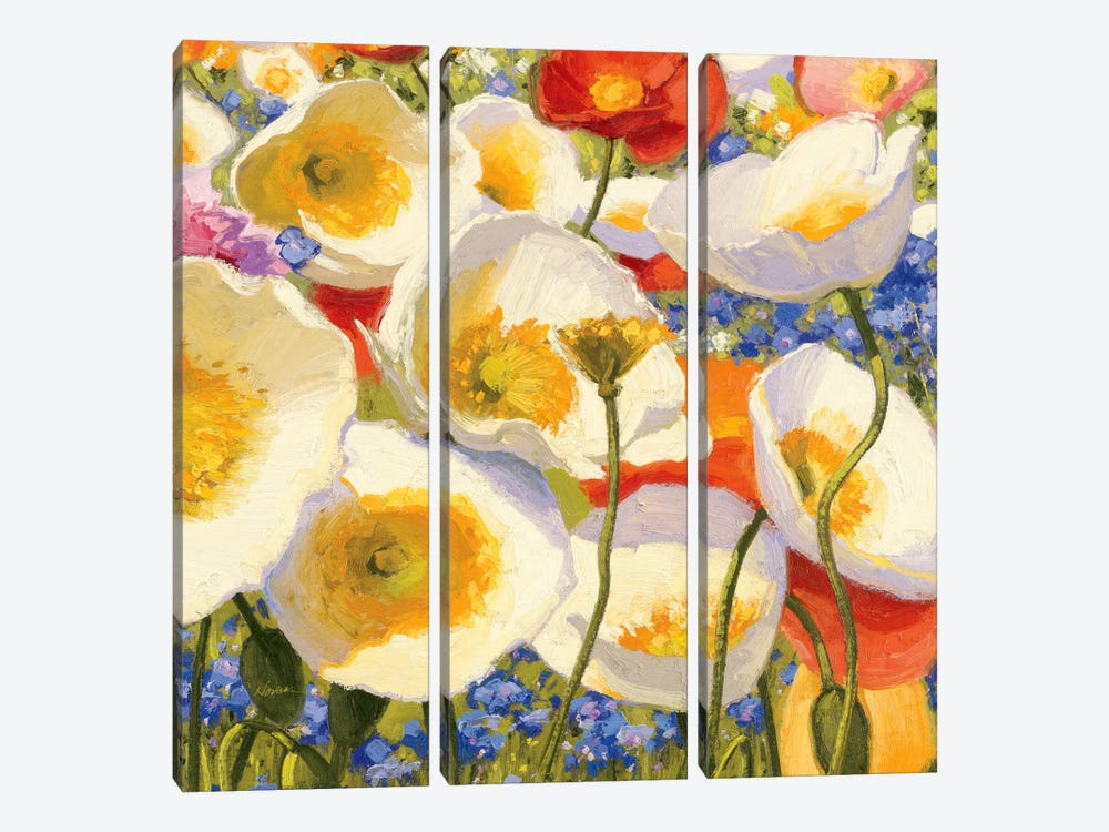 Sunny Abundance III  by Shirley Novak 3-piece Canvas Wall Art