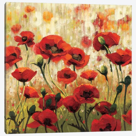 Sunny Spring Glee  Canvas Print #WAC1210} by Shirley Novak Canvas Artwork