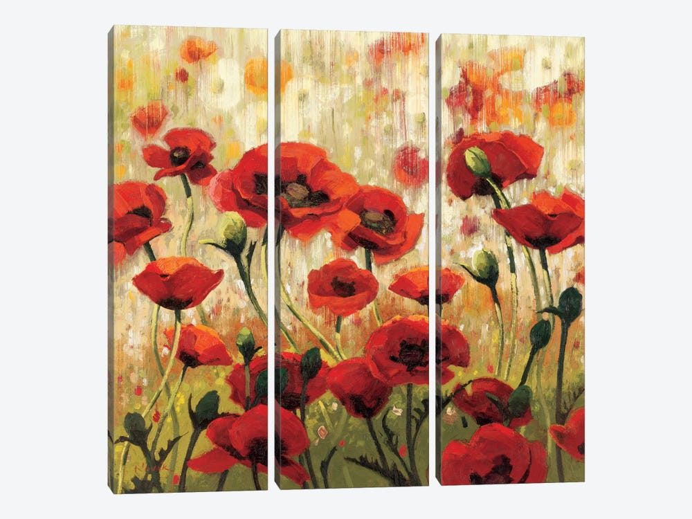 Sunny Spring Glee by Shirley Novak 3-piece Canvas Wall Art