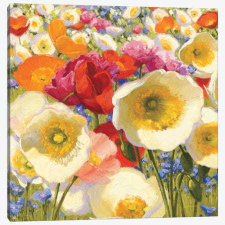 Sunny Abundance  Canvas Print #WAC1211} by Shirley Novak Canvas Art