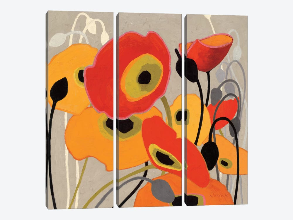 Mango Tango I by Shirley Novak 3-piece Canvas Art Print
