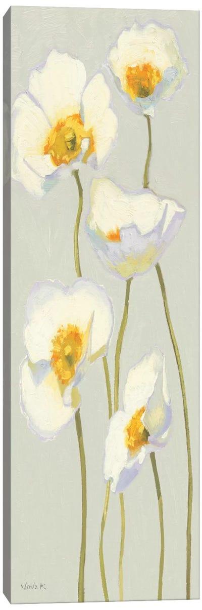 White on White Poppies Panel II   Canvas Print #WAC1225