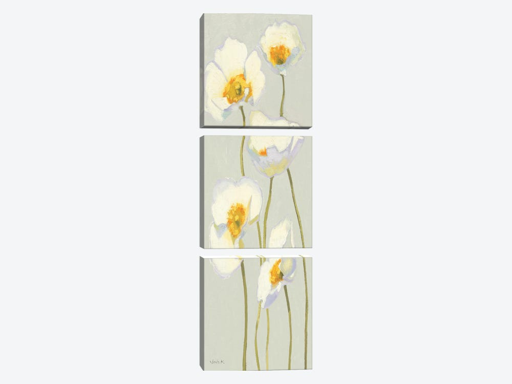 White on White Poppies Panel II by Shirley Novak 3-piece Canvas Wall Art