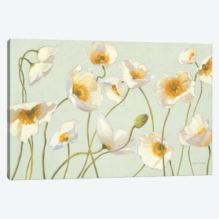 White and Bright Poppies  Canvas Print #WAC1226} by Shirley Novak Canvas Artwork