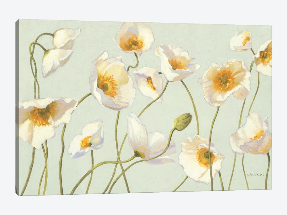 White and Bright Poppies  by Shirley Novak 1-piece Canvas Art Print