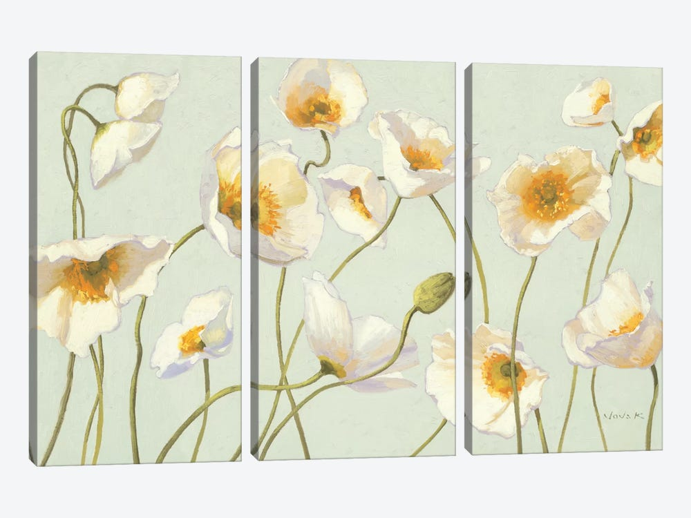 White and Bright Poppies  by Shirley Novak 3-piece Canvas Print