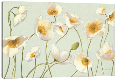 White and Bright Poppies  Canvas Art Print