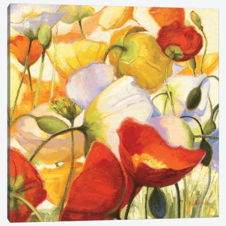 Poppies Up Close Canvas Print #WAC1227} by Shirley Novak Canvas Artwork