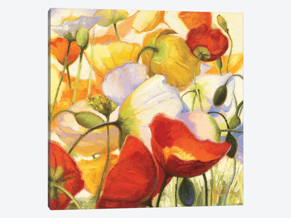 Poppies Up Close by Shirley Novak 1-piece Canvas Artwork