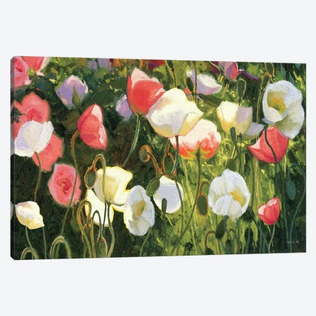 Morden's Blush  Canvas Print #WAC1233} by Shirley Novak Canvas Artwork