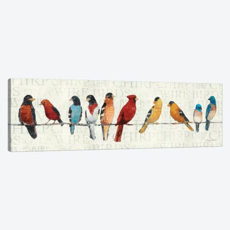 The Usual Suspects - Birds on a Wire Canvas Print #WAC128} by Avery Tillmon Art Print