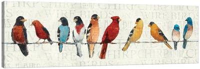 The Usual Suspects - Birds on a Wire Canvas Print #WAC128