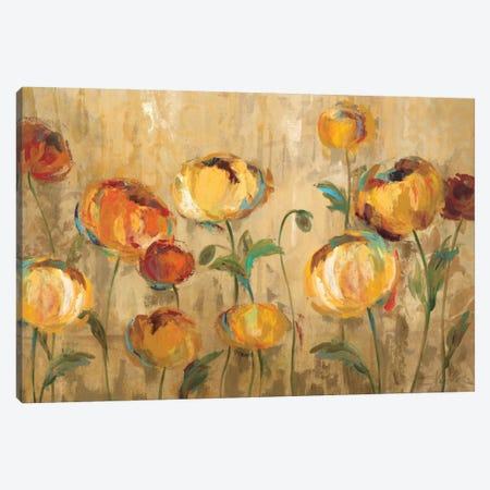 Joyful Ranunculi Canvas Print #WAC1308} by Silvia Vassileva Canvas Artwork