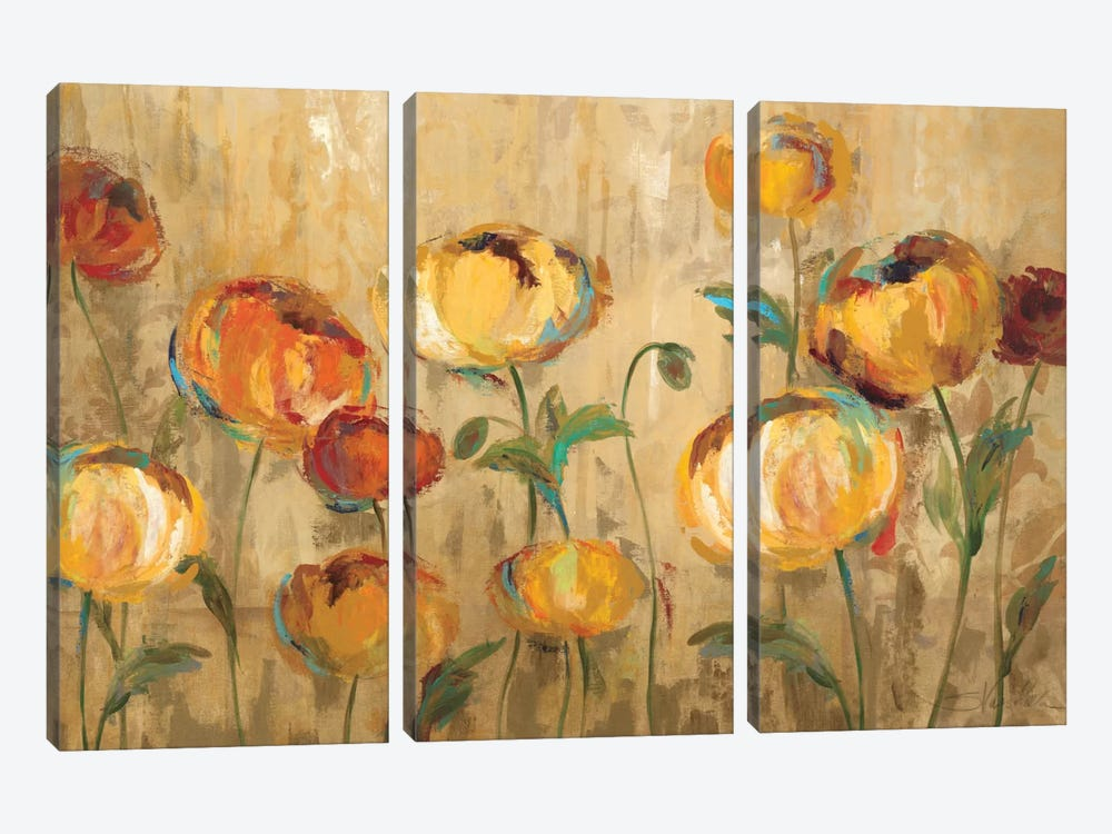 Joyful Ranunculi by Silvia Vassileva 3-piece Canvas Wall Art