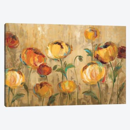 Joyful Ranunculi Canvas Print #WAC1308} by Silvia Vassileva Canvas Artwork