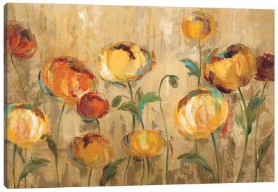 Joyful Ranunculi Canvas Art Print