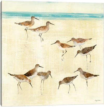Sandpipers  by Avery Tillmon Canvas Art Print