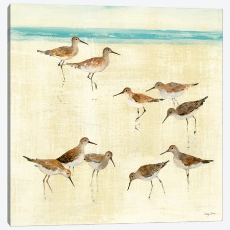 Sandpipers  3-Piece Canvas #WAC131} by Avery Tillmon Canvas Art