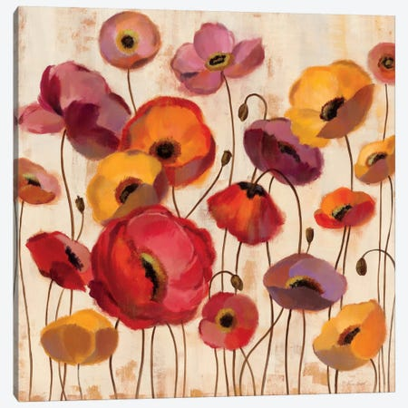 Sunrise Anemones Canvas Print #WAC1325} by Silvia Vassileva Canvas Art Print